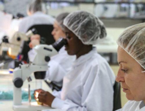 La stratégie de Balt pour devenir un leader mondial des mini-implants anti-AVC