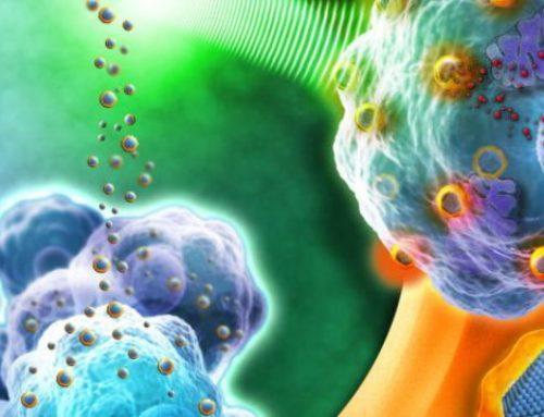 Nanobiotix : la FDA autorise le démarrage d'un essai clinique avec NBTXR3 dans le cancer du pancréas