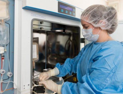 Alsace : Vers un bio médicament pour réparer « facilement » les cœurs après un infarctus