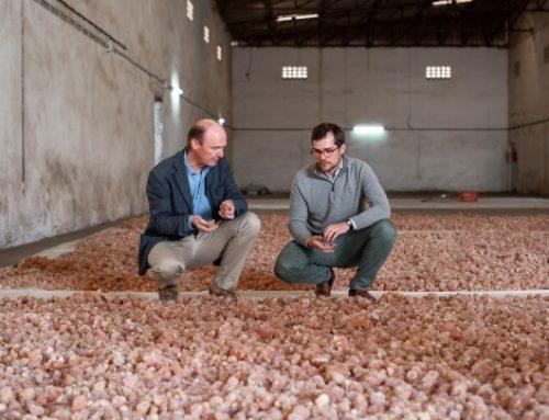 Alland et Robert va ouvrir une nouvelle ligne de production à Saint-Aubin-sur-Gaillon en 2022