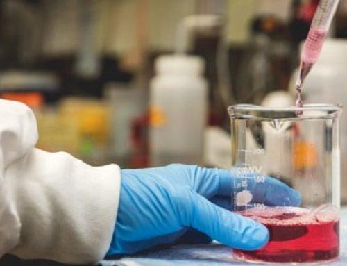 Covid-19 : le traitement de la biotech nantaise Xenothera passe à l'échelle industrielle