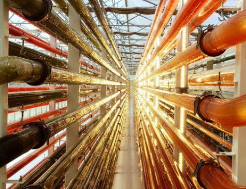 Microphyt va construire une bioraffinerie de microalgues près de Montpellier
